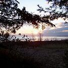 Lake Michigan Sunset View by Diane Rodriguez