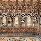 Rasa's Library by Ingrid  Kallick