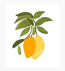Mango Photographic Print