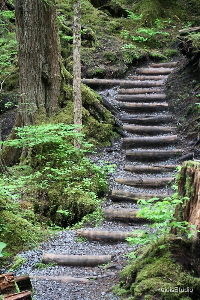 Paths in Life - Alaska by HeidisStudio
