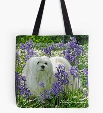 Snowdrop the Maltese -  in the Bluebell Woods Tote Bag