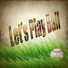 Let's Play Ball by Penny Odom