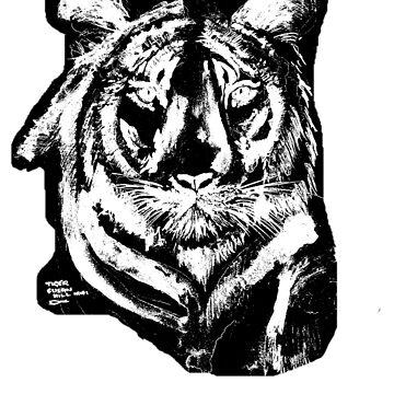 TIGER IN CHALK  by Shoshonan