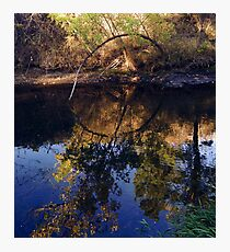 Bear Creek Photographic Print