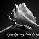 Pledge by Kimberley Davitt