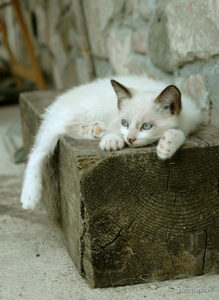 I was sleeping! by elisaperusin