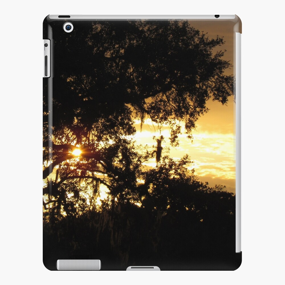 Orange sunset  Funda y vinilo para iPad