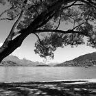 Lake Wakatipu and Frankton Beach by JOSEPHMAZZUCCO