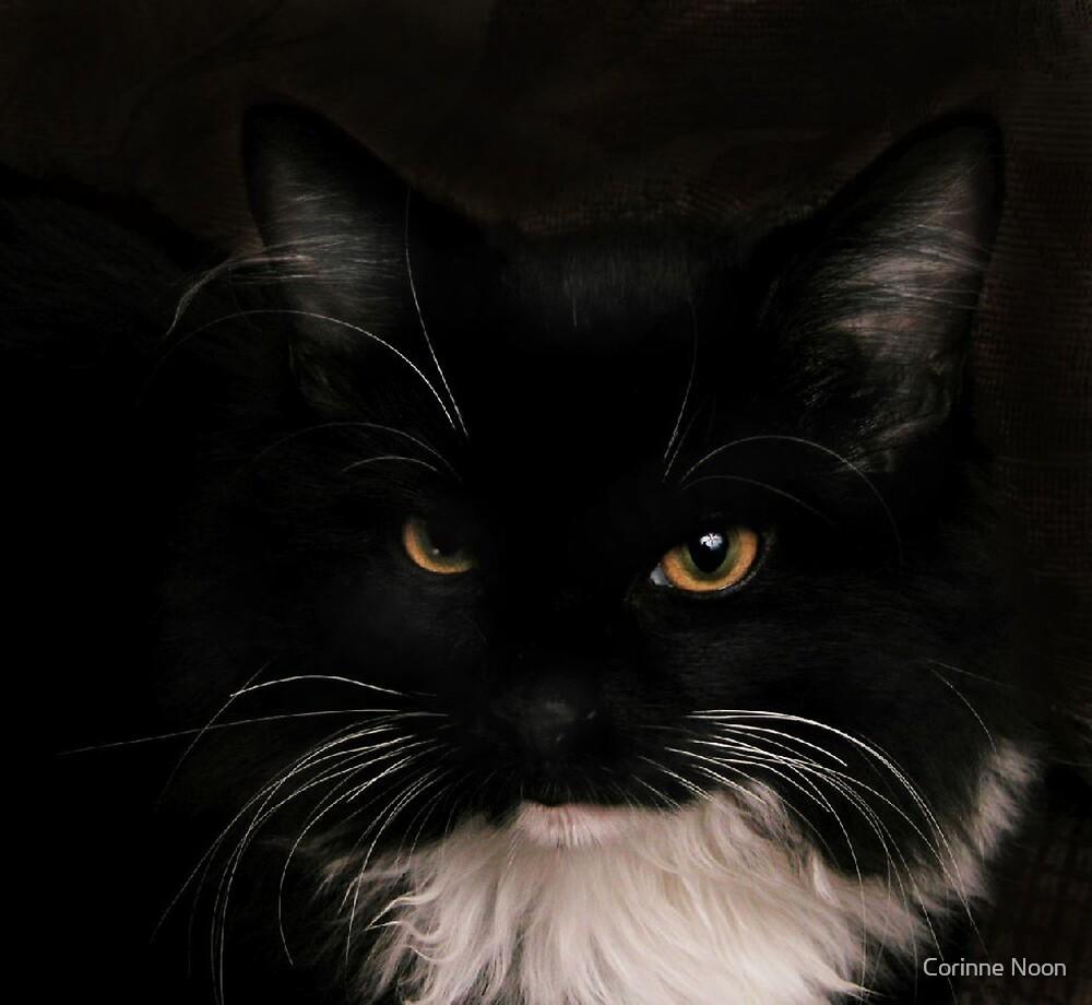 Portrait of an Ichigo by Corinne Noon