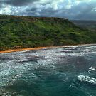 Ghajn Tuffieha Bay by Xandru