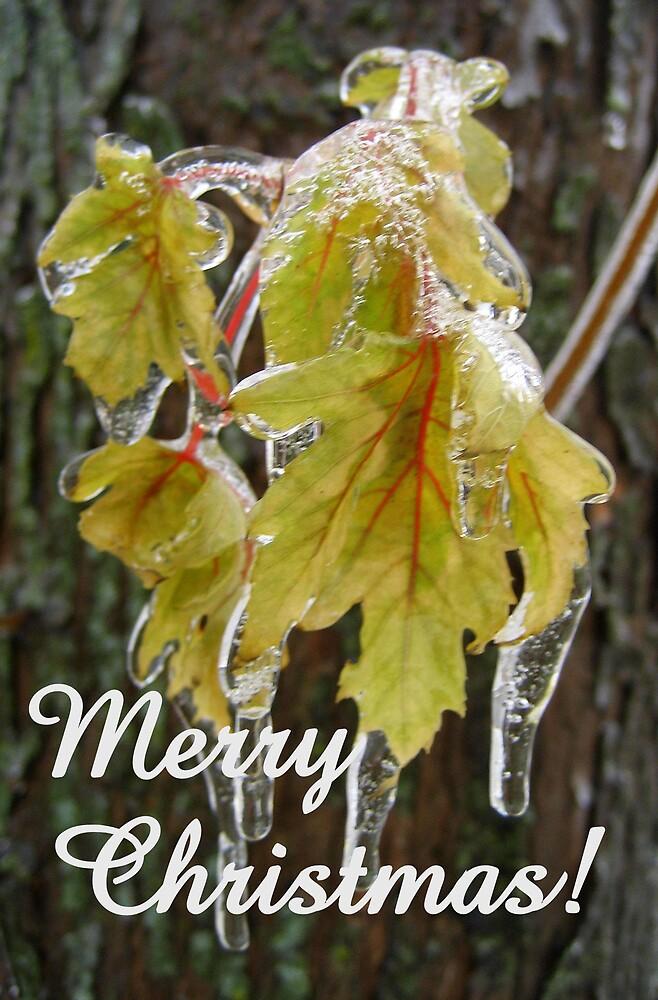 Merry Christmas! by mekea