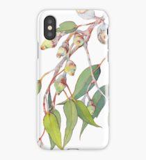 Australian native eucalyptus tree branch iPhone Case/Skin
