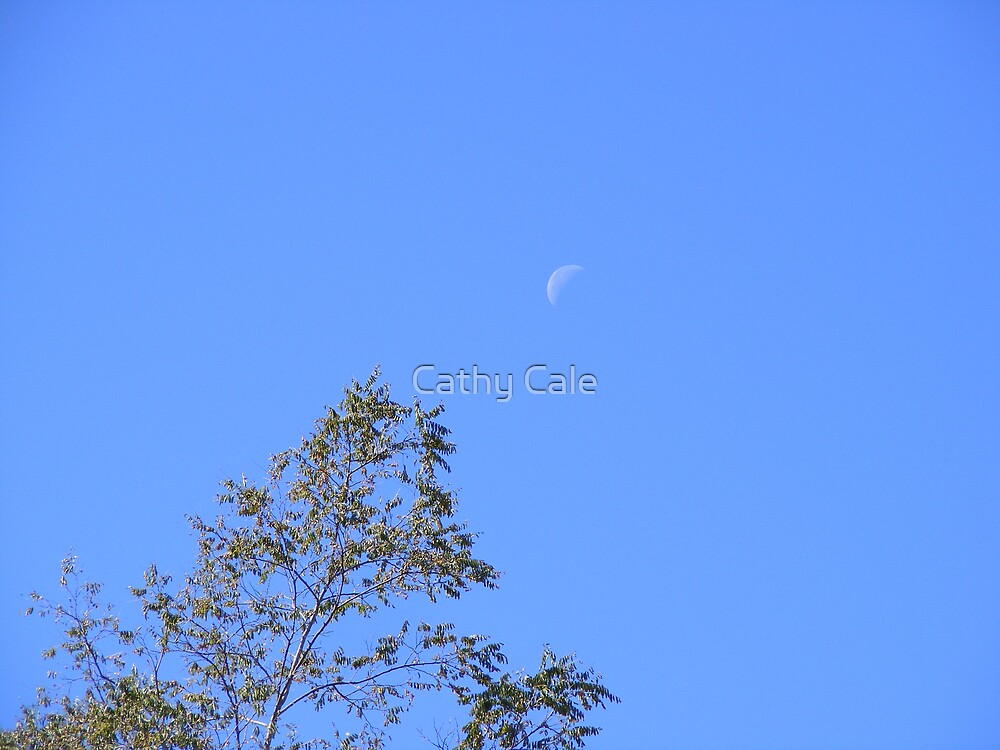 Tree & Moon by Cathy Cale