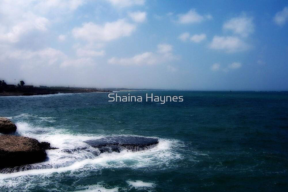 Mediterranean Coast by Shaina Haynes