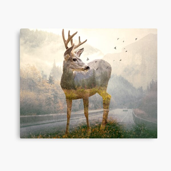 Deer remembers Metal Print