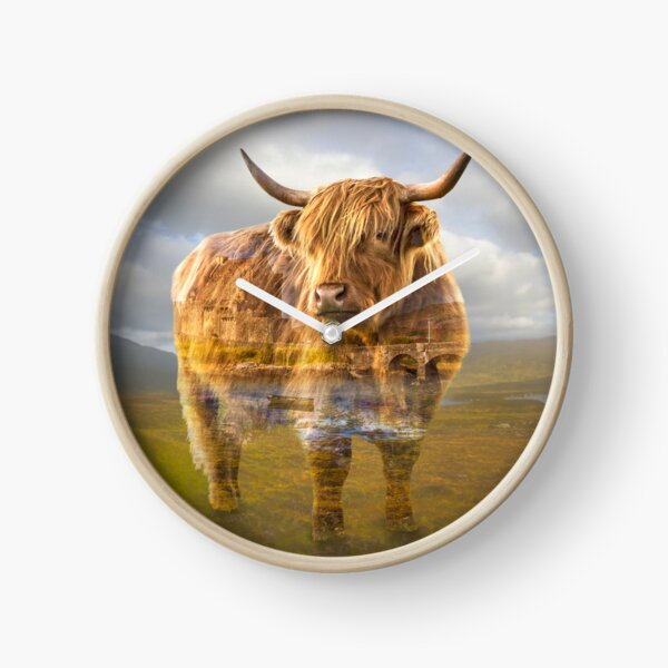 Highland cow recalls Clock