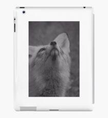The fantastic mr fox iPad Case/Skin