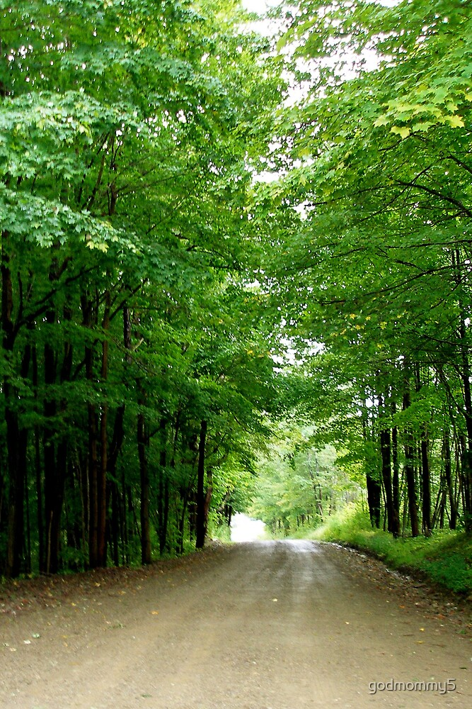 The Road Leading to Peace by godmommy5