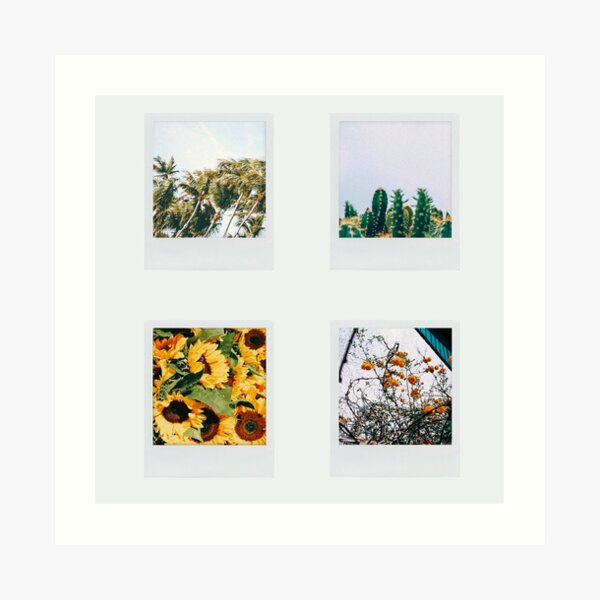 4 polaroid pictures Art Print