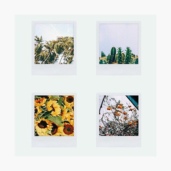 4 polaroid pictures Photographic Print