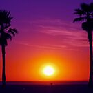 Malibu Sunset by aaronarroy