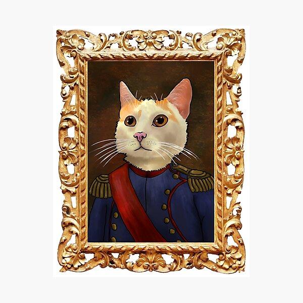 Napoleon Cat Photographic Print