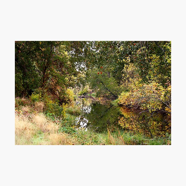 Reflected waters Photographic Print