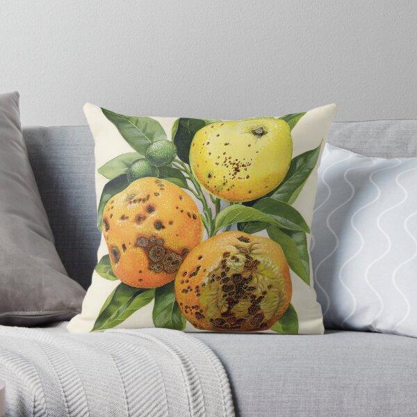 Citrus black spot on oranges - Guignardia citricarpa Throw Pillow