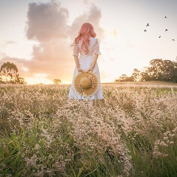 Field of Dreams by hayleyrphoto