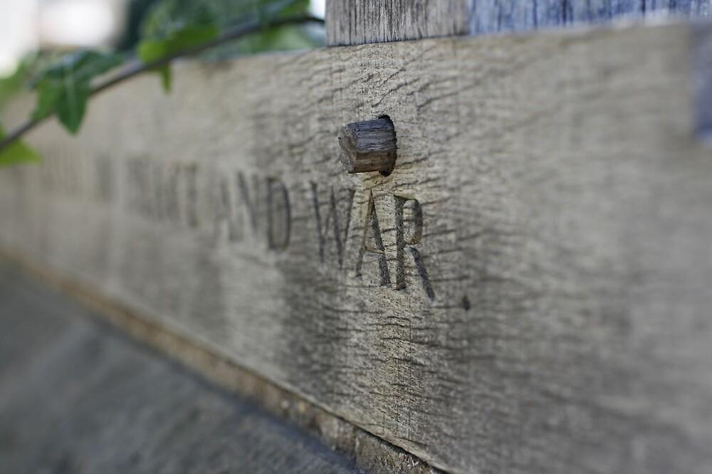 War... by rubberduck