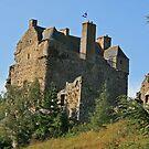 Neidpath Castle by Robert Abraham