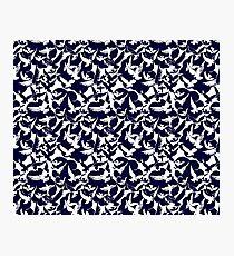 Midnight Blue White Doves Photographic Print