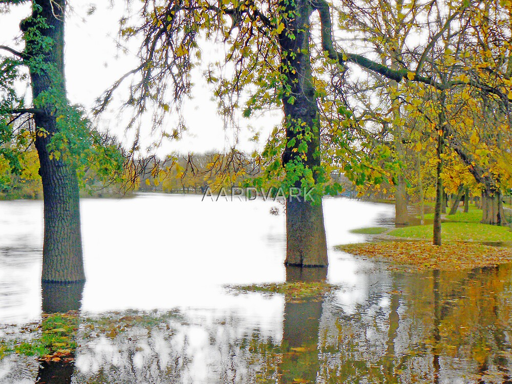 Autumn Flood by AARDVARK