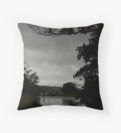 On the way to Albany As Is Throw Pillow