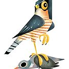 Eurasian Sparrowhawk and Common Wood Pigeon caricature by rohanchak