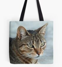 Stunning Tabby Cat Close Up Portrait Tote Bag