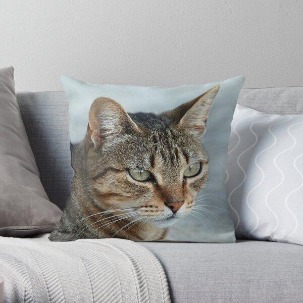 Stunning Tabby Cat CloseUp Photo Portrait Throw Pillow