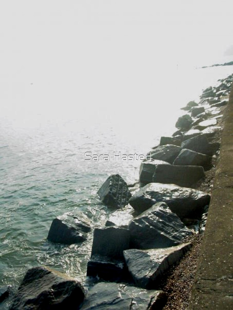 West Bay by Sara Hasted