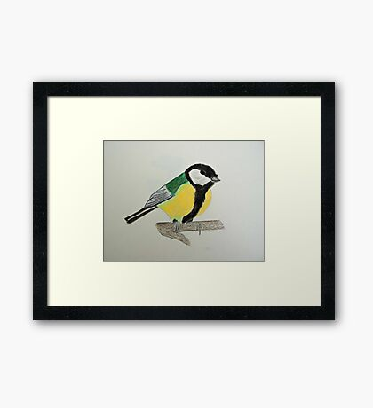 Great Tit Coloured Pencil Drawing Framed Print