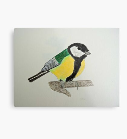 Great Tit Coloured Pencil Drawing Metal Print
