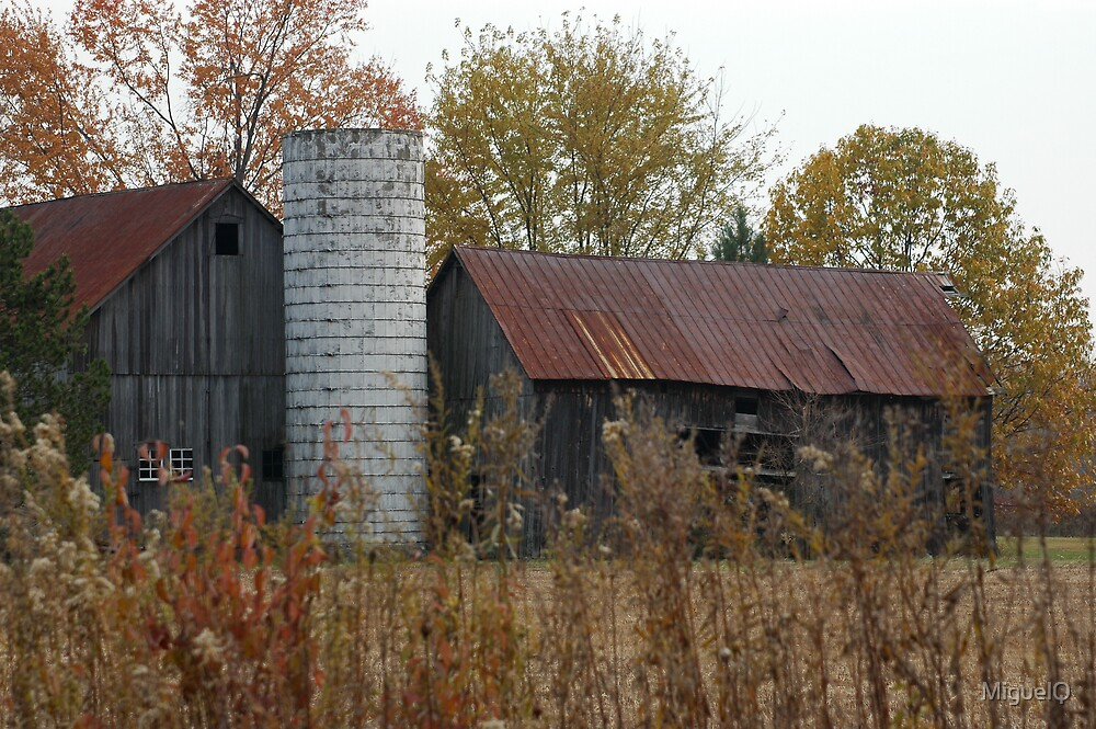 Grandpa's Barn by MiguelQ