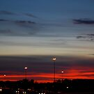 Night Sky by Emily Allison