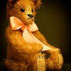 Brown Teddy by Karen Duffy