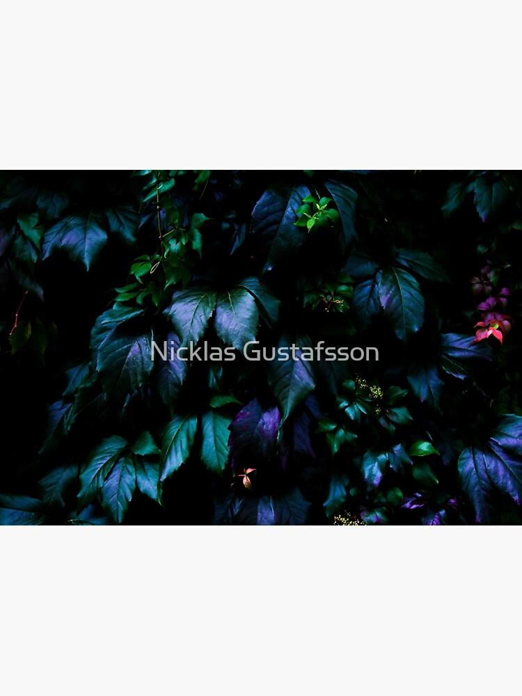 Bienvenido a la jungla de Nicklas81