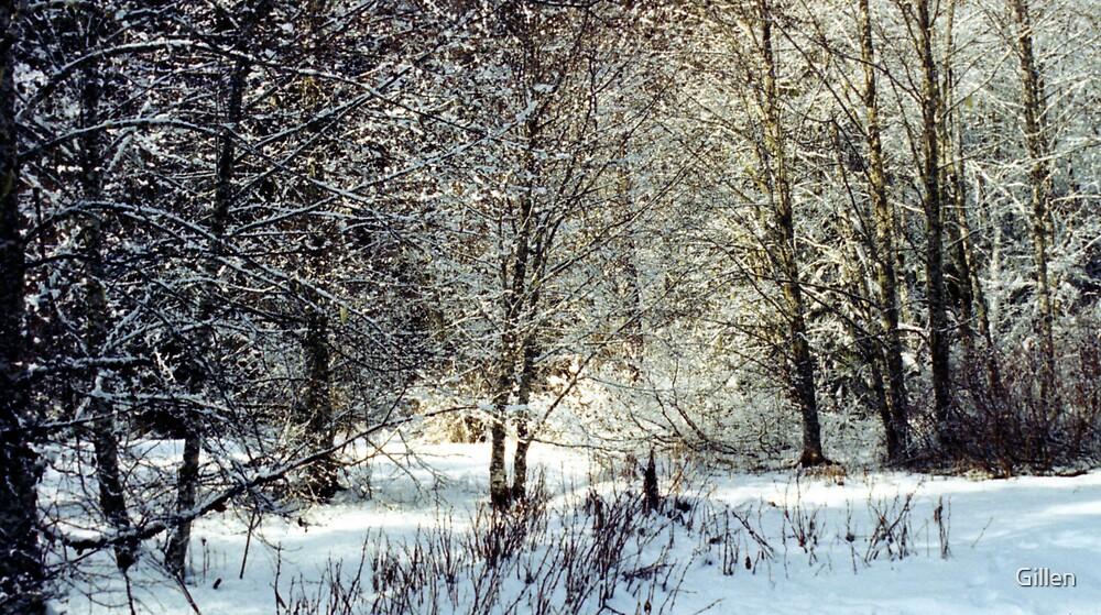 Snowy Woodland by Gillen