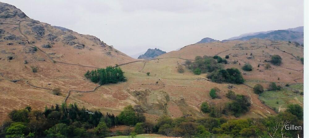 Lakeland hills by Gillen