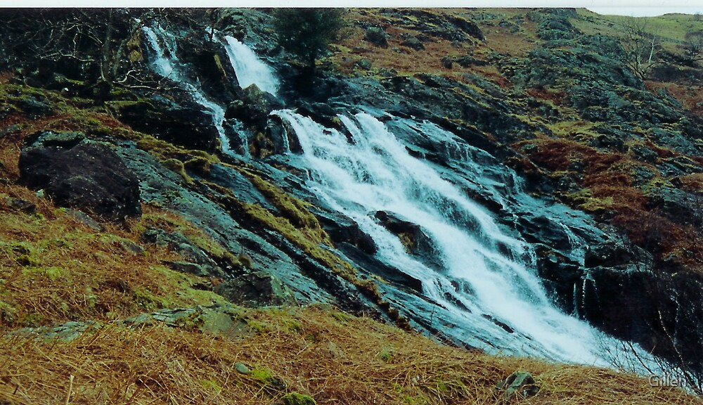 Lakeland Ghyll by Gillen