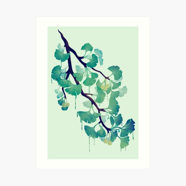 O Ginkgo (in Green) Art Print