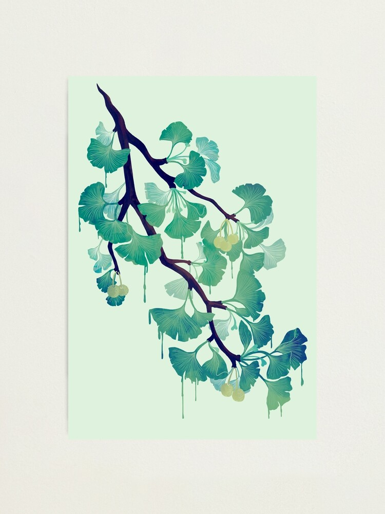 Alternate view of O Ginkgo (in Green) Photographic Print