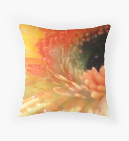 Gerbera Glow Throw Pillow